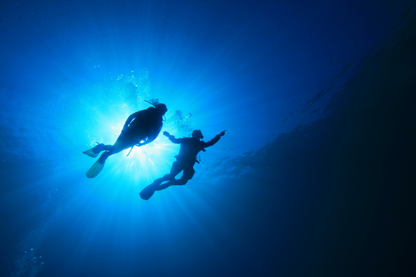 Scuba Diving on the African Rich Coastline